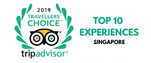 tripadvisor traveller's choice award winner